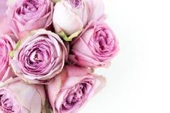 vita rosa ro för bakgrund Top beskådar Royaltyfri Fotografi