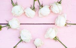 Vita rosor på rosa wood bakgrund Royaltyfria Bilder