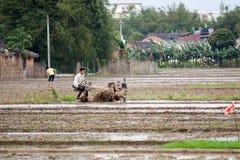 Vita rurale in Cina del sud Fotografie Stock