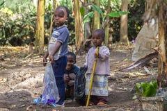 Vita rurale della Tanzania Fotografia Stock Libera da Diritti