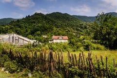 Vita rurale in Turchia Fotografia Stock Libera da Diritti