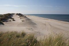 Vita sander, Danmark Arkivfoton