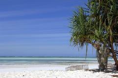 Vita Sandy Beach på den Zanzibar ön Royaltyfri Fotografi