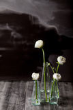 Vita smörblommor i flaskorna Royaltyfri Foto