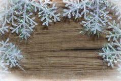 vita snowflakes Royaltyfri Foto
