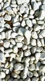 Vita stenar med slät yttersida Arkivbilder
