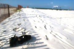 vita strandsandsandals Fotografering för Bildbyråer