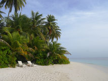 2 vita strandstolar på sandstranden av den tropiska ön Arkivfoto