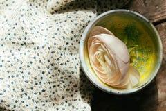 Vita sväva ranunculusblommor Utrymme för kopia för Spa wellnessbakgrund Royaltyfri Fotografi