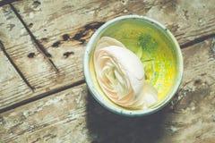Vita sväva ranunculusblommor Utrymme för kopia för Spa wellnessbakgrund Royaltyfria Foton