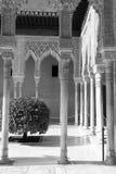 vita svarta kolonner Arkivbild