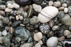 vita svarta pebbles Fotografering för Bildbyråer