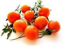 vita tangerines för 1 leaves Royaltyfri Bild