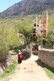 Vita tibetana del villaggio Immagini Stock