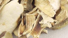 vita torkade champinjoner arkivfilmer