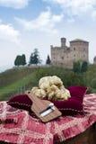Vita tryfflar från Piedmont Italien Fotografering för Bildbyråer
