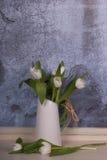 Vita tulpan i en vit tillbringare Arkivfoto