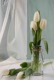 Vita tulpan i minimalistic Hemmiljögarnering Arkivbild