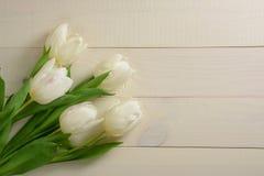 Vita tulpan på en ljus träbakgrund Royaltyfria Foton