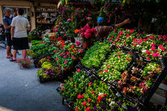 Vita in una piccola città turca Fotografie Stock Libere da Diritti