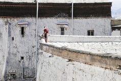 Vita väggar av den Tashi Lhunpo kloster, Tibet Royaltyfri Foto