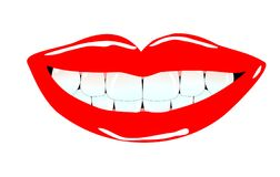 Lovley smile. Vital and beauty human anterior teeth with lovely smiling lips Vector Illustration