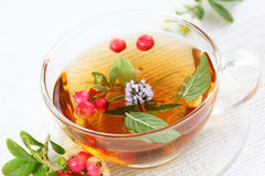 Vitality cranberry tea Royalty Free Stock Photo