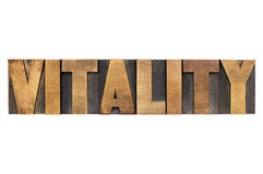Vitality word in wood type Stock Images
