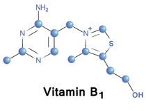 Vitamin b1. Chemical formula, molecule structure, medical vector illustration Stock Image
