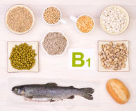 Vitamin B1 containing foods Royalty Free Stock Images