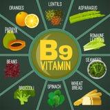 Vitamin B9 Food royalty free illustration