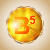 Vitamin B5 icon. Vitamin B5 gold shining pill icon. Pantothenic acid capsule symbol. Vector illustration Royalty Free Stock Photography