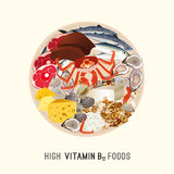 Vitamin B12 Image Stock Photography