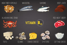 Vitamin B12 Image. High vitamin B12 Foods. Healthy seafood, meat, fish, crab, cottage cheese, liver and oysters. Vector illustration isolated on a dark grey Stock Photos