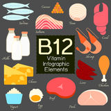 Vitamin B12 infographic element. Vitamin B12 infographic flat design element. Vector illustration Stock Images