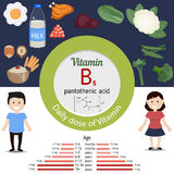 Vitamin B5 or Pantothenic Acid infographic Royalty Free Stock Image