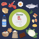Vitamin B2 or Riboflavin infographic Stock Images