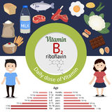 Vitamin B2 or Riboflavin infographic Royalty Free Stock Image