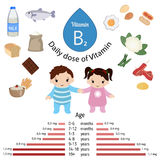 Vitamin B2 or Riboflavin infographic. Vitamin B2 or Riboflavin and vector set of vitamin B2 rich foods. Healthy lifestyle and diet concept. Daily doze of vitamin Royalty Free Stock Images