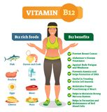 Vitamin B12 rich food icons and health benefits list, healthy lifestyle informative poster.Vector illustration with healthy female. Vitamin B12 rich food Royalty Free Stock Images