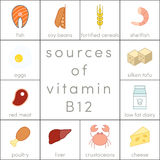 Vitamin B12. Sources of vitamin B12,  food icons for infographic Stock Image