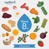Vitamin B1 or Thiamin infographic Royalty Free Stock Photography