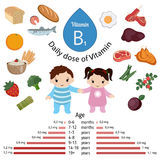 Vitamin B1 or Thiamin infographic. Vitamin B1 or Thiamin and vector set of vitamin B1 rich foods. Healthy lifestyle and diet concept. Daily doze of vitamin B1 Stock Image
