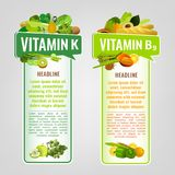Vitamin Banners Set. Vitamin K and Vitamin B9 banners with place for text. Vertical vector illustrations with caption lettering and top foods highest in vitamins Stock Image