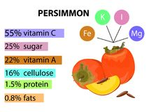 Vitamin C content in the most common fruit. A visual schedule. Content vitamin and minerals in persimmon . Cartoon illustration. A visual schedule. The Royalty Free Stock Images