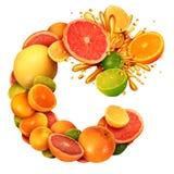 Vitamin C som citrust textbegrepp som en grupp av frukt med apelsincitroner kalkar tangerin och grapefrukten som ett symbol av su stock illustrationer