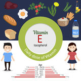 Vitamin E infographic. Vitamin E and vector set of vitamin E rich foods. Healthy lifestyle and diet concept Royalty Free Stock Photo