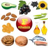 Vitamin F content plant and animal products Stock Photography
