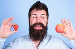 Vitamin fruit nutrition concept. Healthcare dieting vitamin. Man bearded smiling holds apple and strawberry in hands. Blue background. Fruit and berry in hands royalty free stock image