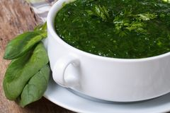 Vitamin green spinach soup close-up Stock Photography